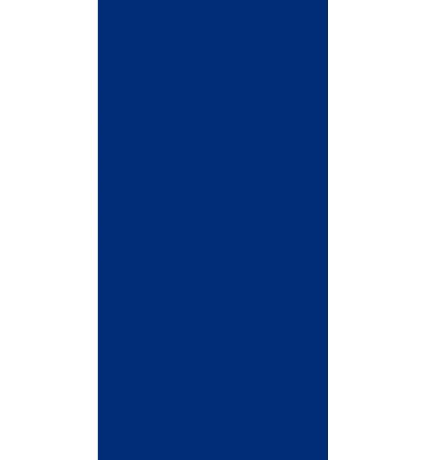 Tycoon Blue