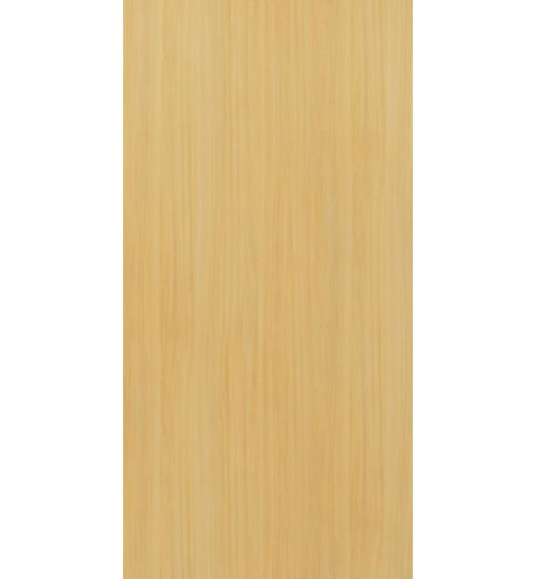 European White Elm