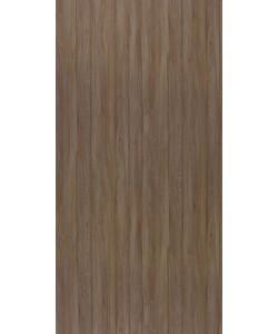 Beaver Oak